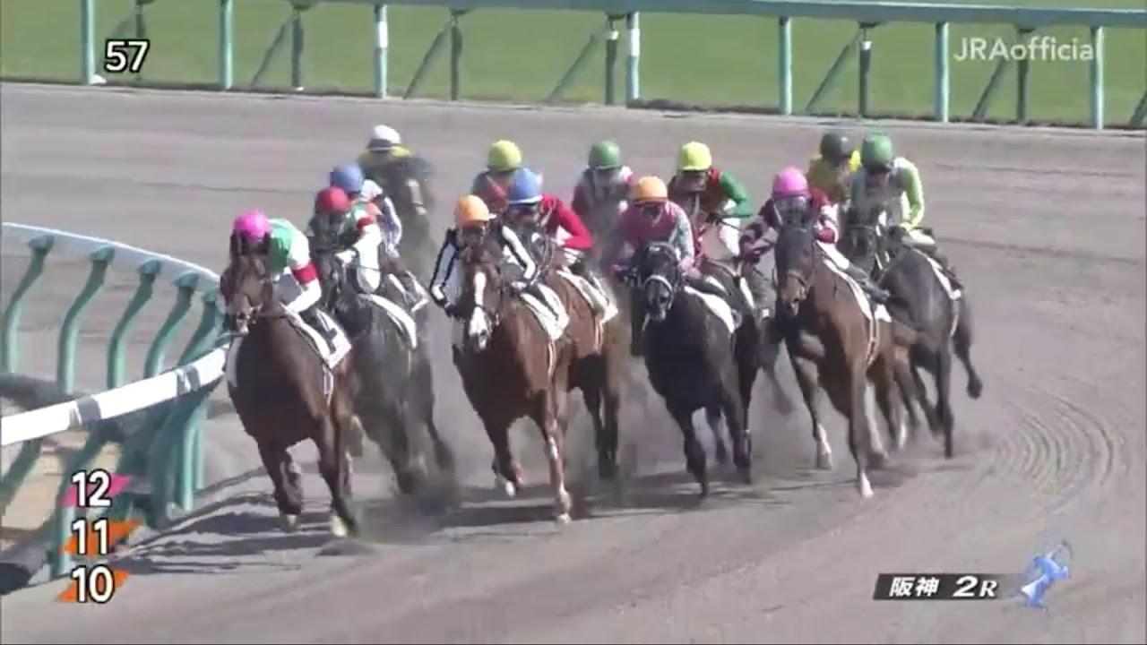 2019/03/09 阪神2R 3歳未勝利【ブッチーニ】 – 長さ: 1:38。