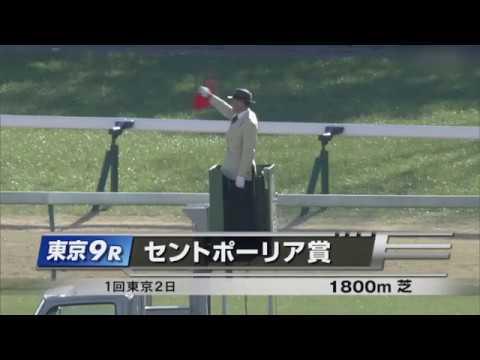 2020/2/2 東京9R「セントポーリア賞」ショウナンハレルヤ – 長さ: 3:41。