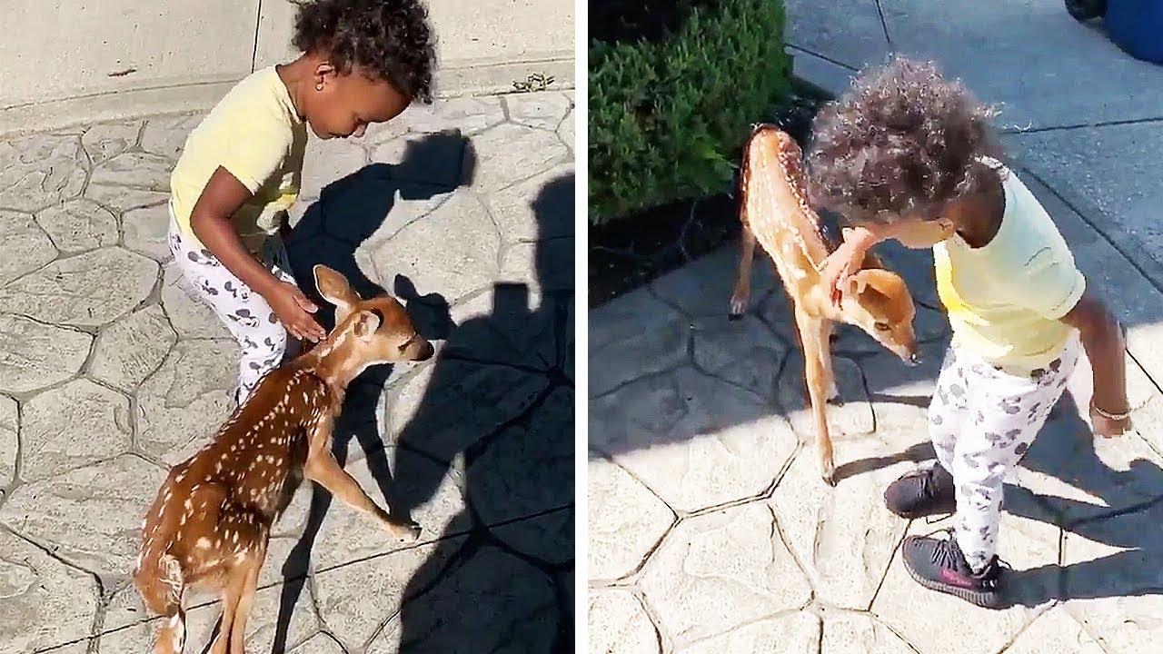 完全にディズニー映画じゃん!動画「小鹿と友達になった女の子」に癒される人続出